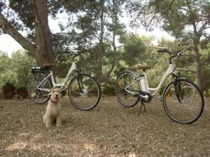 Turismo y bicicleta eléctrica