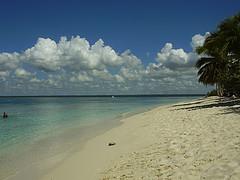 """Una de las isla vírgenes de República dominicana """"La Isla catalina"""""""