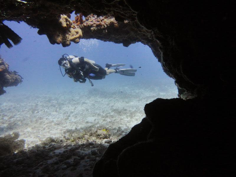 Mejores tours en Cancún y la Riviera Maya