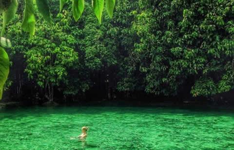Conoce la Piscina de Esmeralda en Krabi