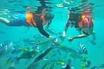 Las maravillas del turismo subacuático.