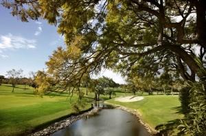 Unas vacaciones de golf
